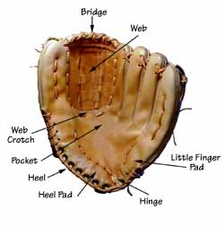 Baseball glove repair and Glove Stuff® baseball glove cleaner and conditioner - photo of a baseball glove with labels of various areas of the glove